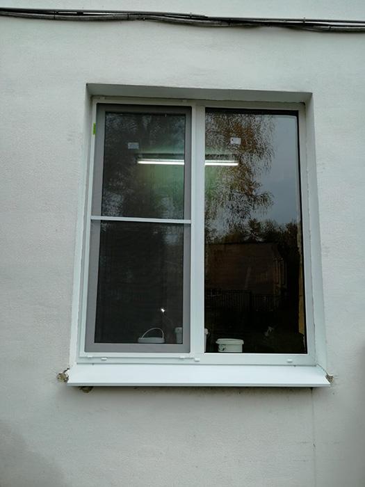 Двустворчатое окно с москитной сеткой